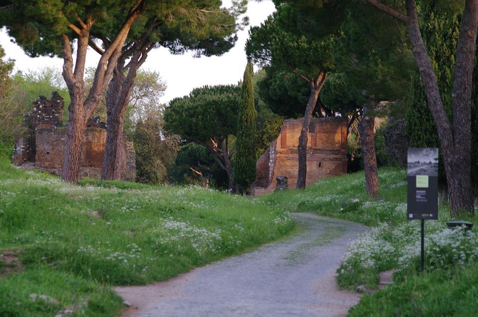 Roma(1)